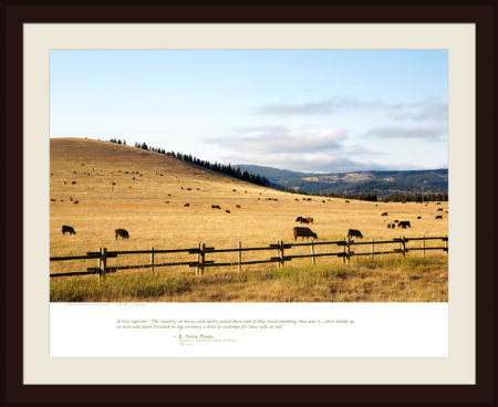 CATTLE — Wyoming