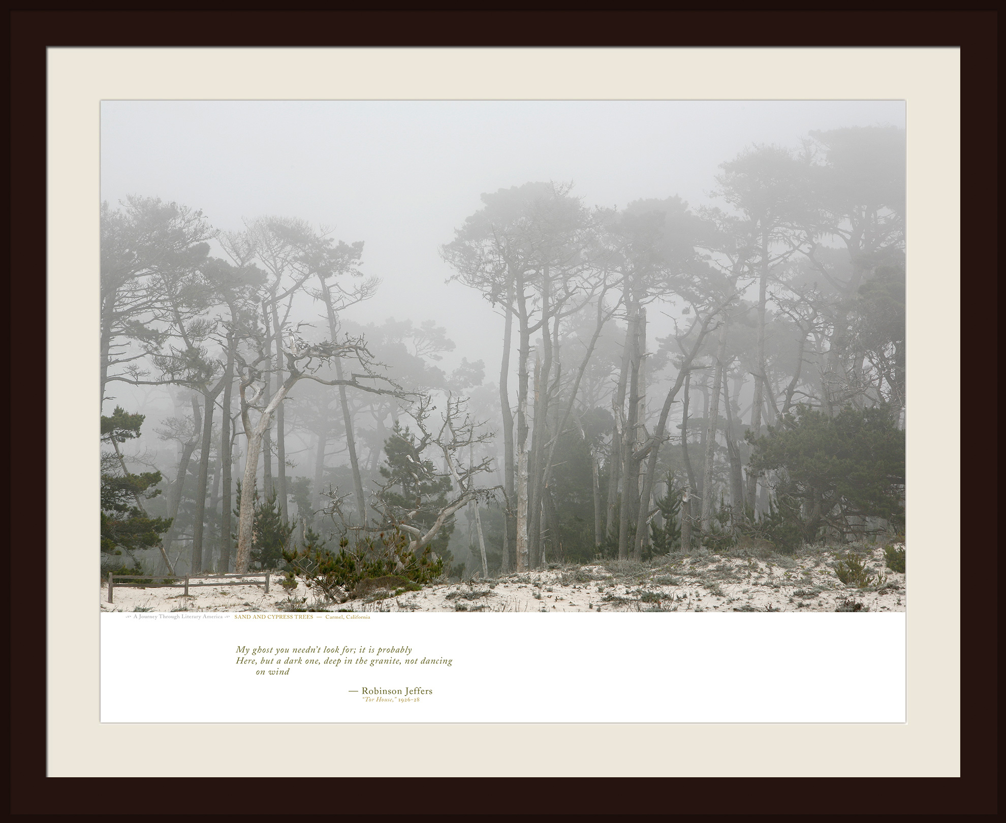 SAND AND CYPRESS TREES — Carmel, California