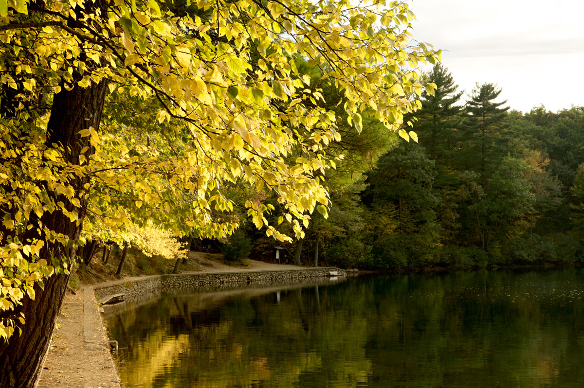 Photo of Walden Pond — Concord, Massachusetts