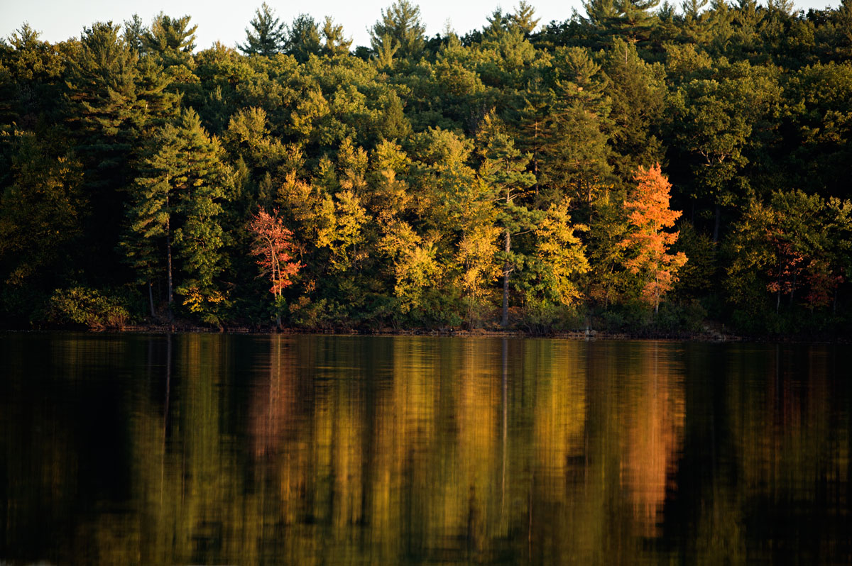 Photo of Walden Pond in the fall — Concord, Massachusetts