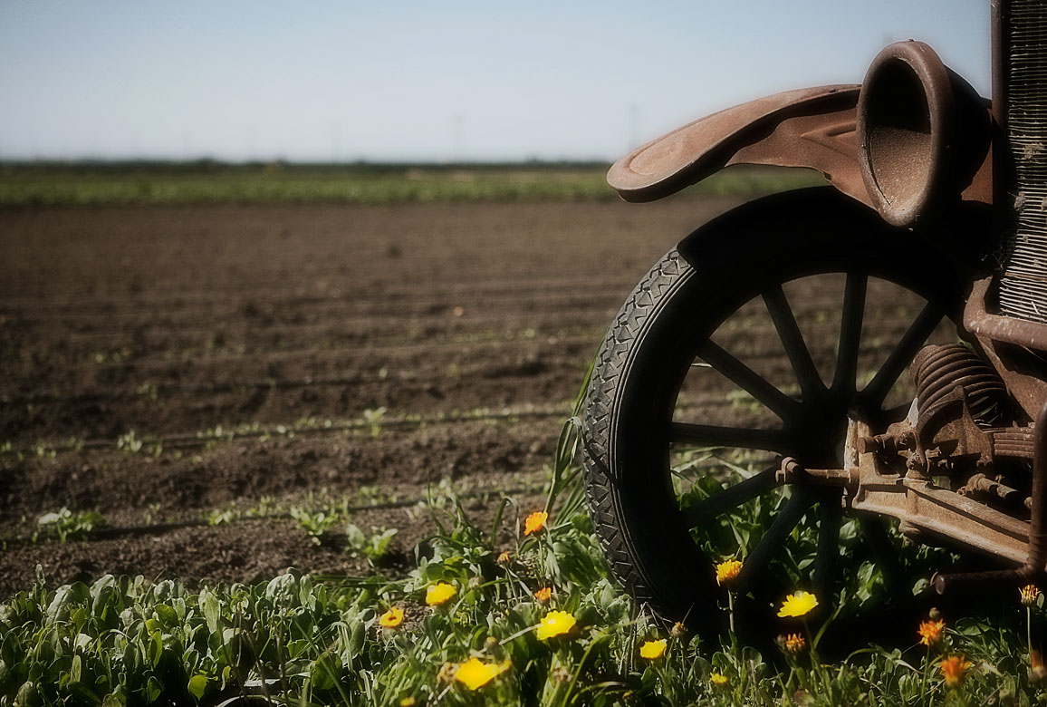 Photo of old car in agricultural field —Salinas, California