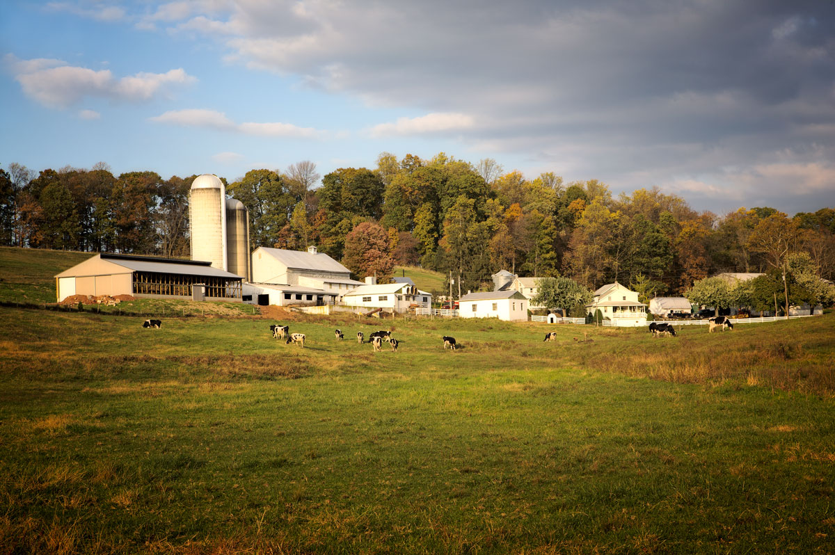 Photo of a Pennsylvania Dutch dairy farm — near Plowville, Pennsylvania