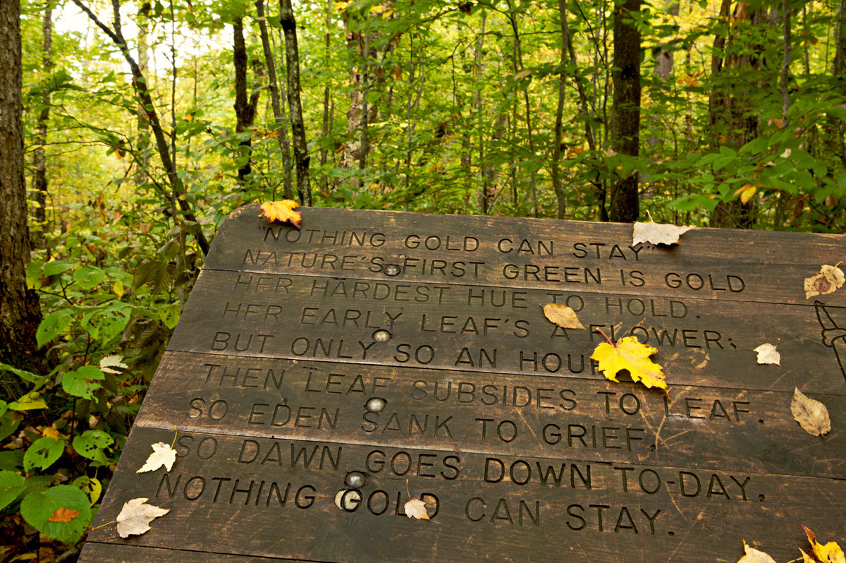 Photo of Nothing Gold Can Stay plaque Robert Frost Interpretive Trail — Ripton, Vermont
